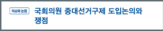 '이슈와논점' - 국회의원 중대선거구제 도입논의와 쟁점